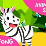 Zebra Cadabra