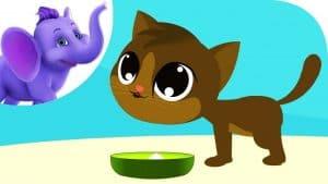 Pussy-cat Ate The Dumplings,The Dumplings