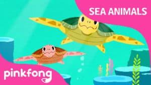 Tooty Ta Sea Turtle
