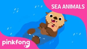 Sea, sea, Sea Otter