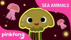 Wibble wobble, Jellyfish